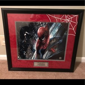 Amazing Spider-Man 16x20 autographed by Stan Lee